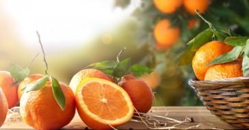 Naturellement vôtre: Les bienfaits des Oranges