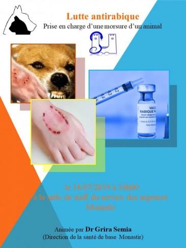 Lutte antirabique: Prise en charge d'une morsure d'un animal