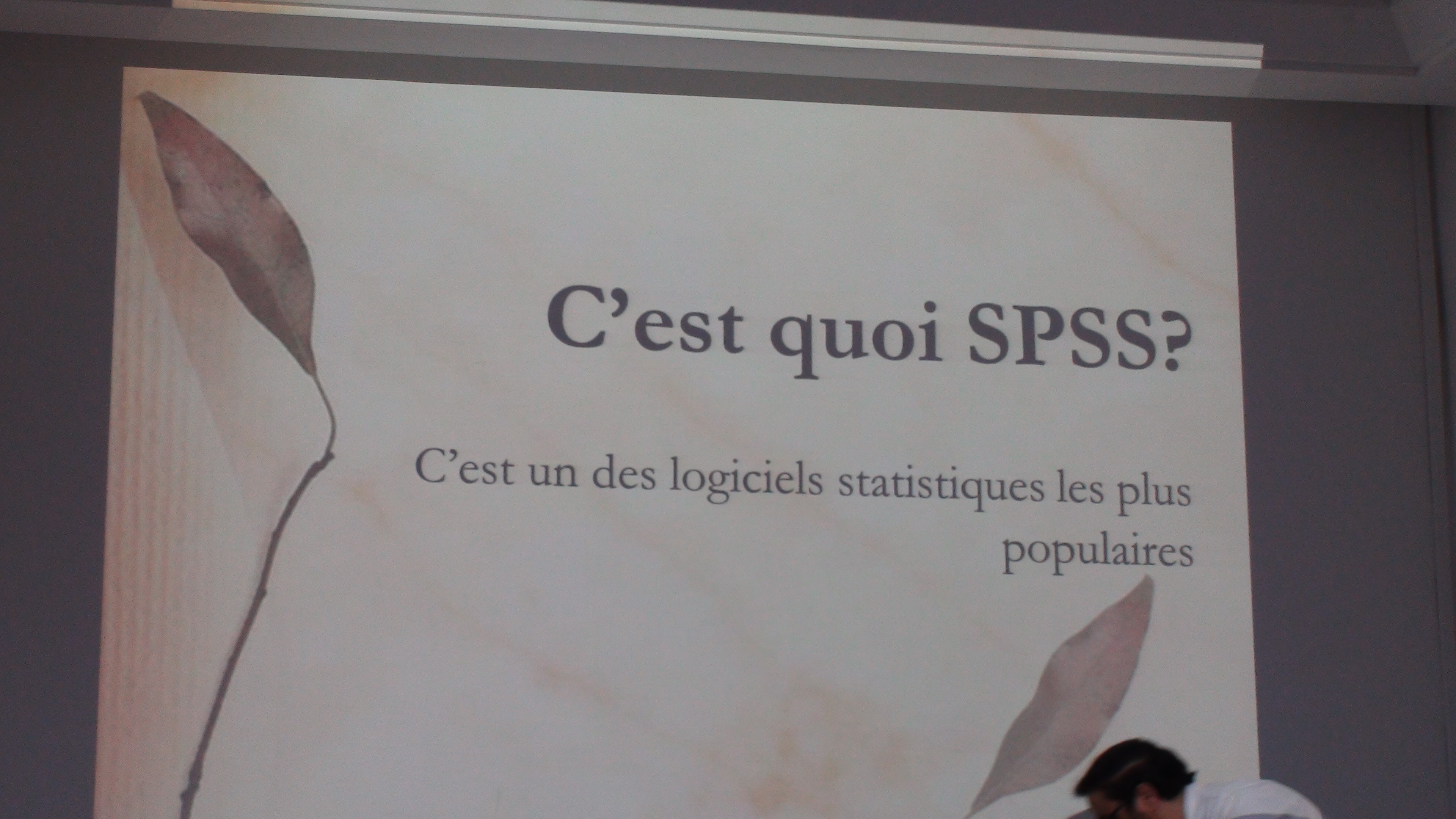 Formation SPSS